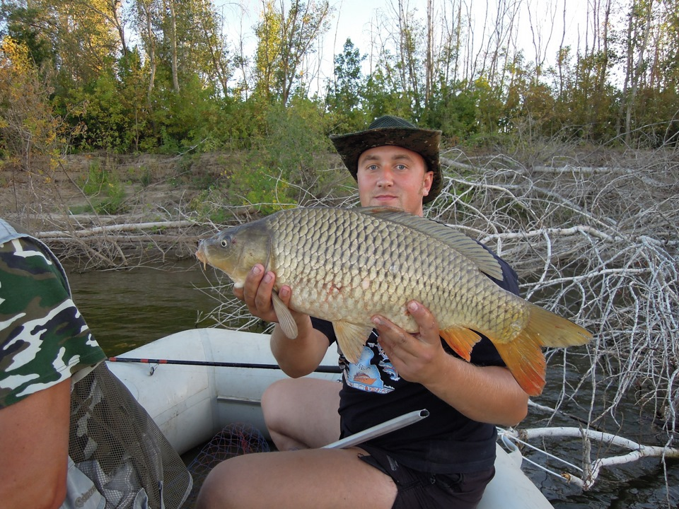 веб суд рыболовная склад успех