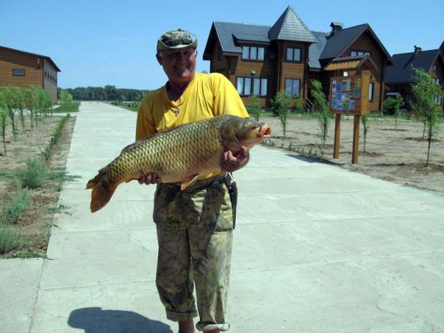 арсенал и ко рыболовная база