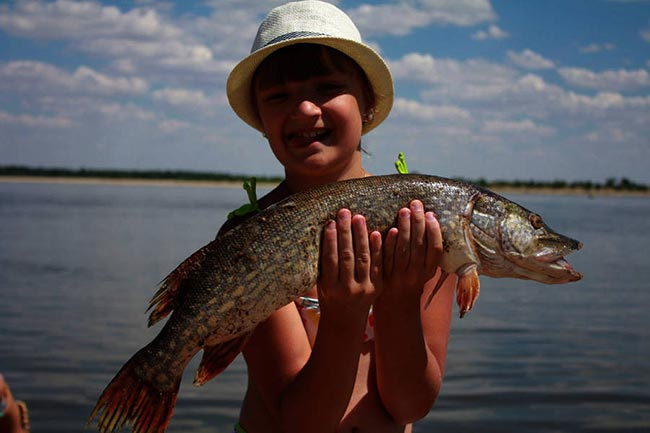 места для рыбалки в ахтубинской пойме