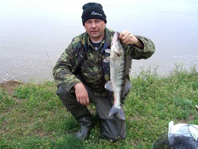 рыбалка для нижней ахтубе весной