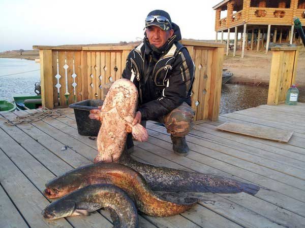 конец марта рыбалка на ахтубе