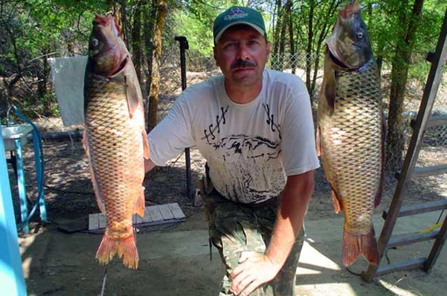 рыболовные базы в харабалинском районе золотой плав