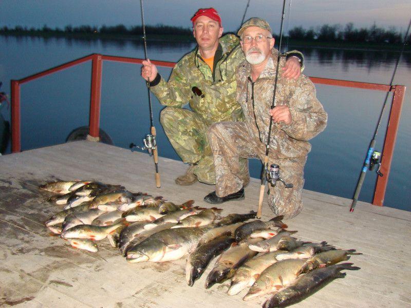 прогнозы клева рыбы лодейное поле