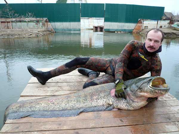 рыбалка в астрахани успех