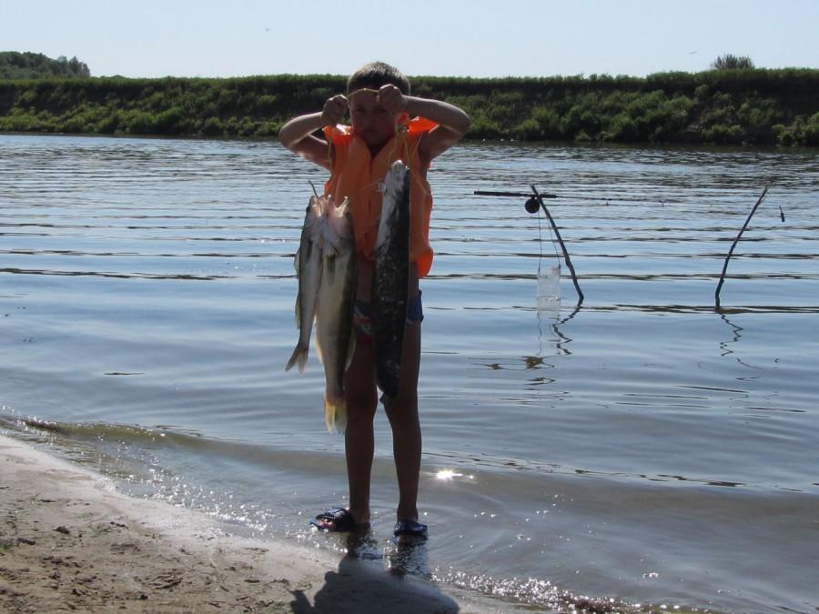 судачье место рыболовная база