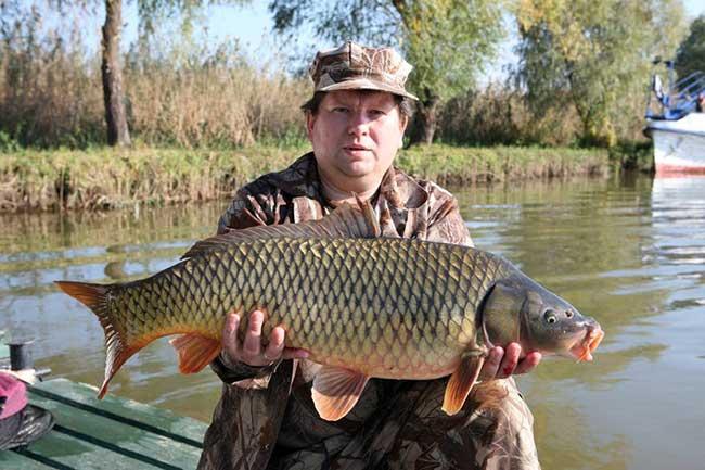 лучшая рыбалка на дону или волге