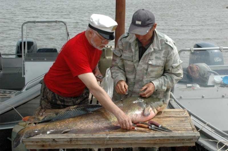 запрет ловить рыбу а астраханской области