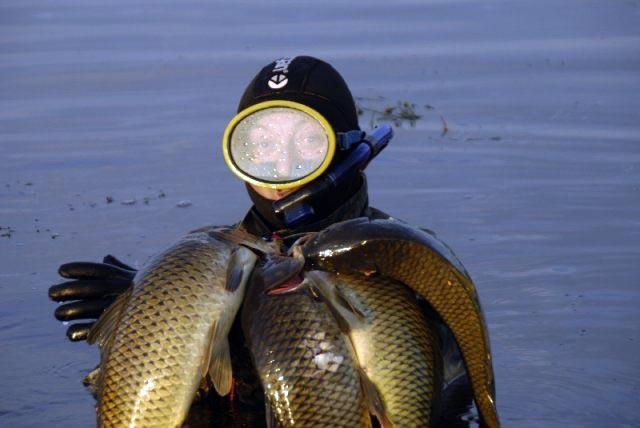 база рыболовная заповедник