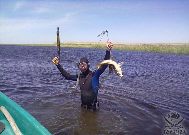 форум рыбаков с вышки