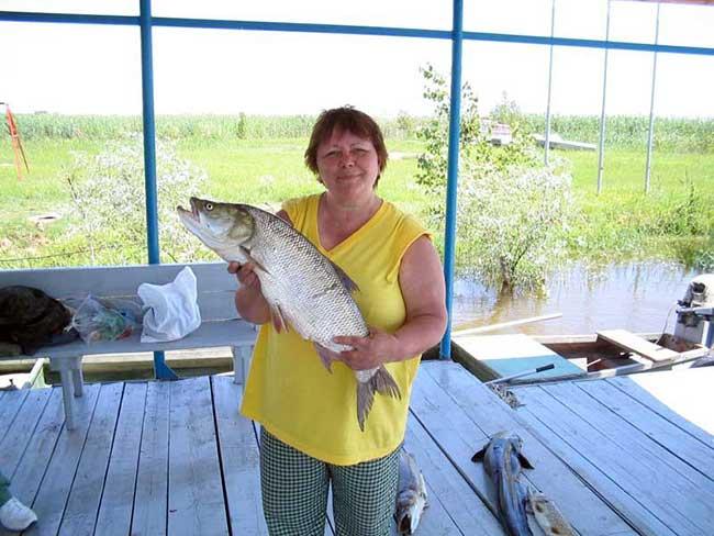 покупка рыболовной базы