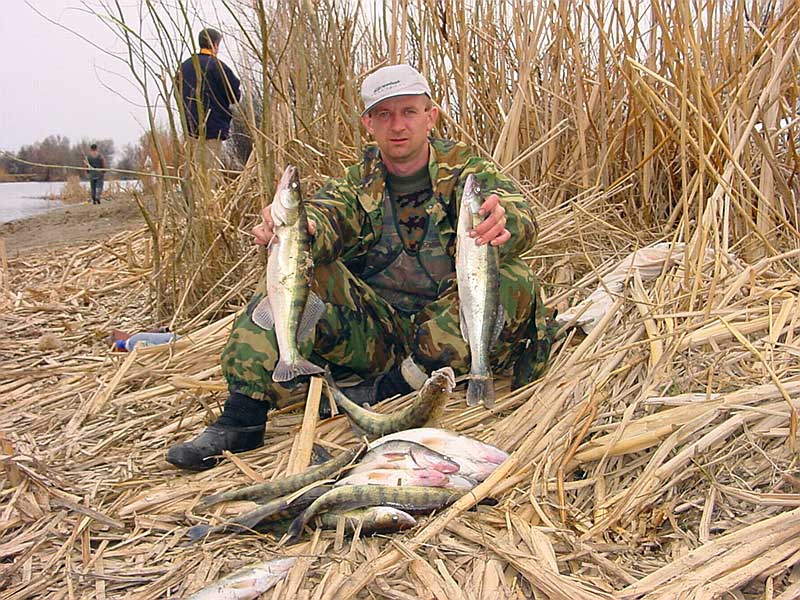 рыбак инфо