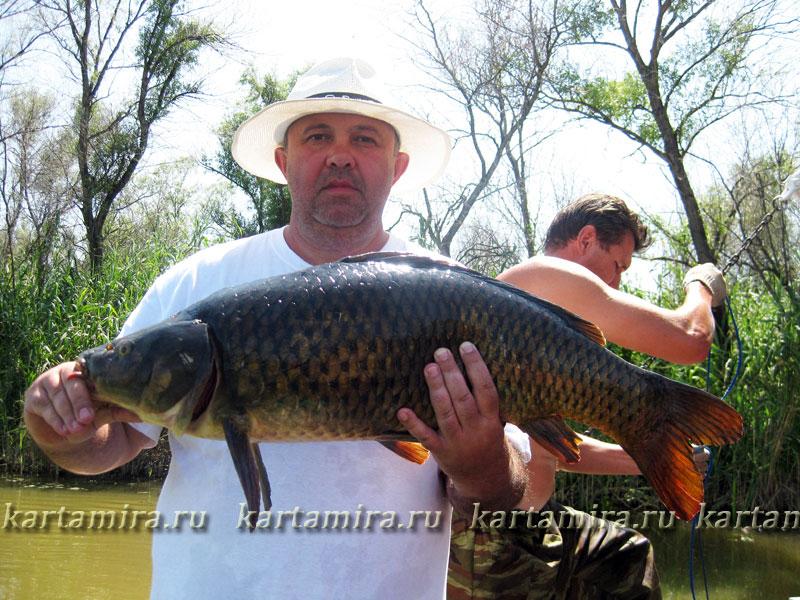 теплоход телец рыбалка